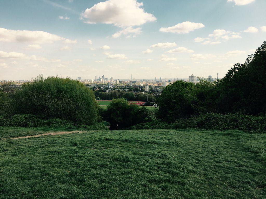 Hampstead Heath view