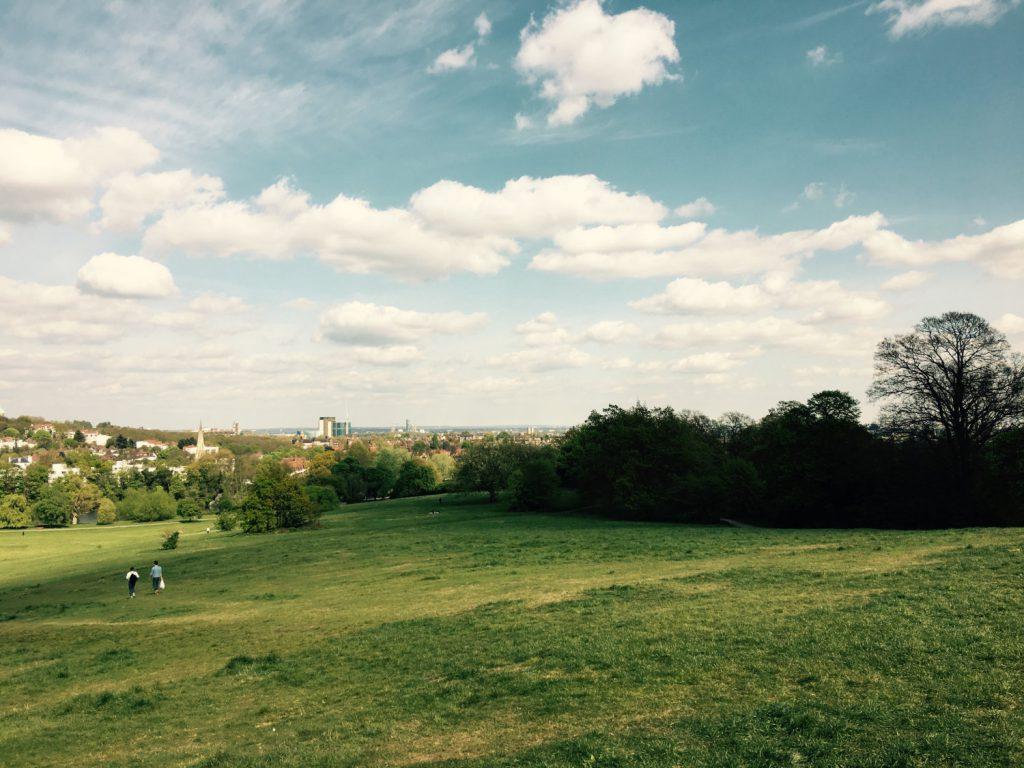 Hampstead Heath greens
